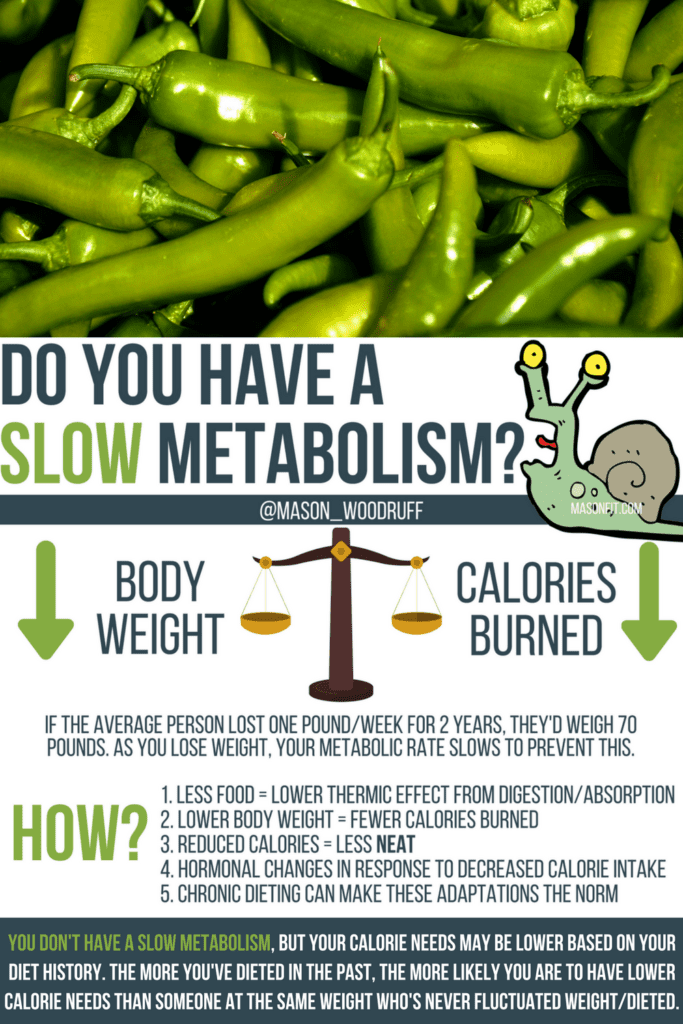 Is it possible to have a slow metabolism? And if so, what can you do about it? #weightloss #fitness #fatloss