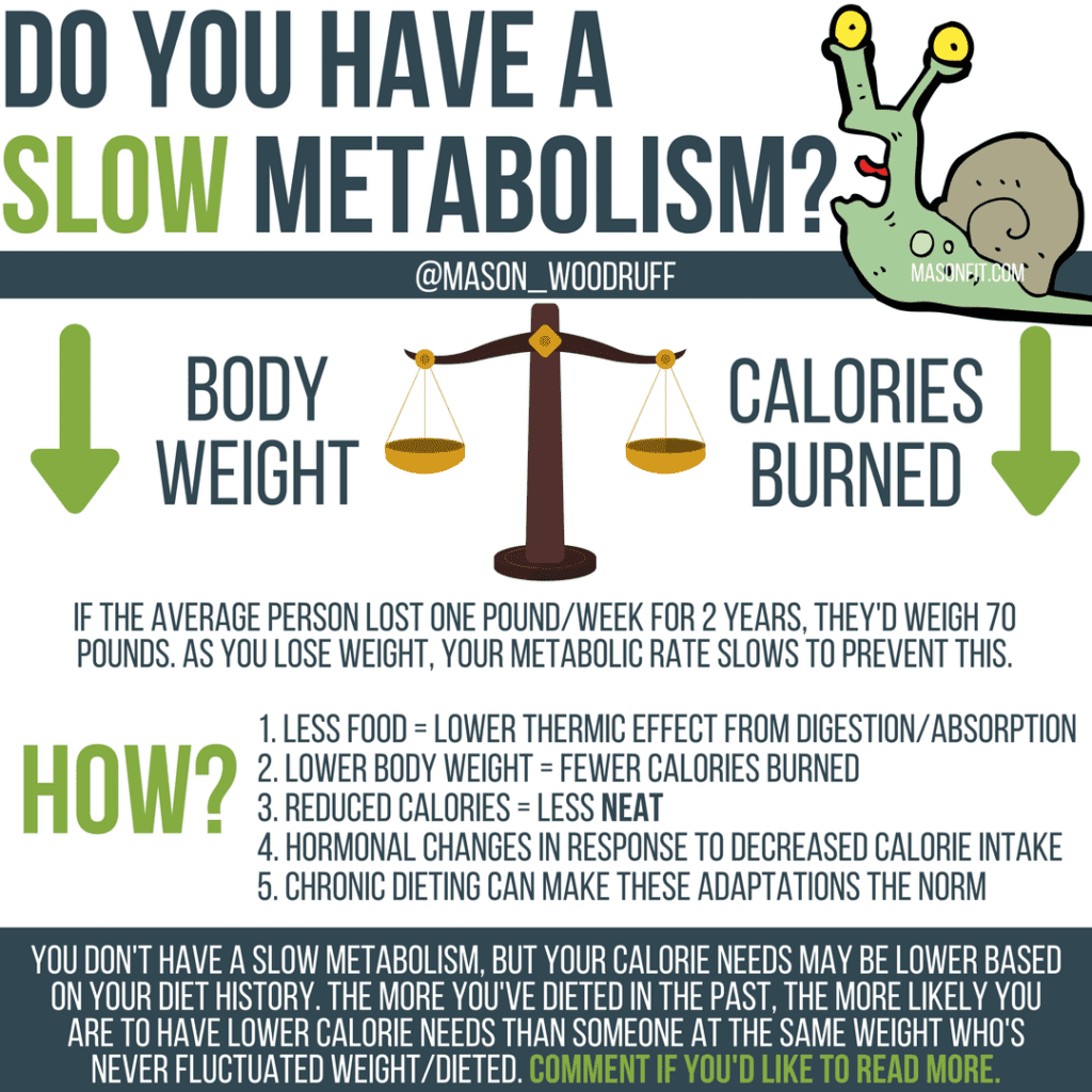what is metabolic damage and how do I reverse diet?