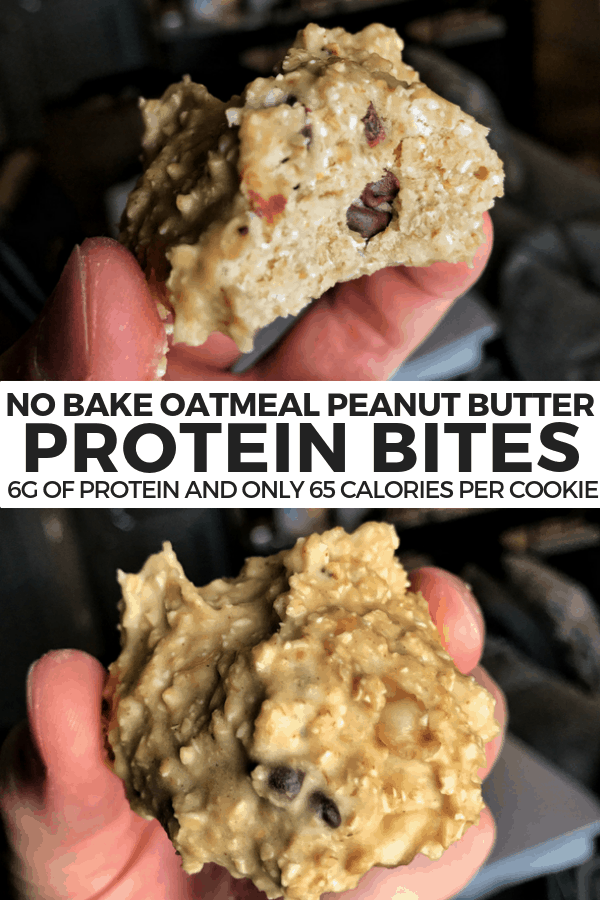 These no bake protein bites are packed with flavor and have 6 grams of protein with only 65 calories, making them a perfect pre or post-workout snack.