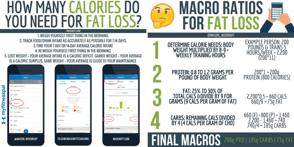 how to calculate calorie and macronutrient needs
