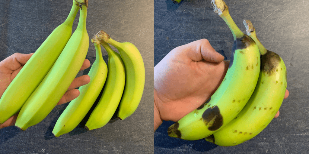 how to ripen a banana in the microwave