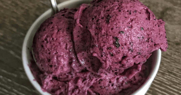 Blueberry Mango Protein Ice Cream