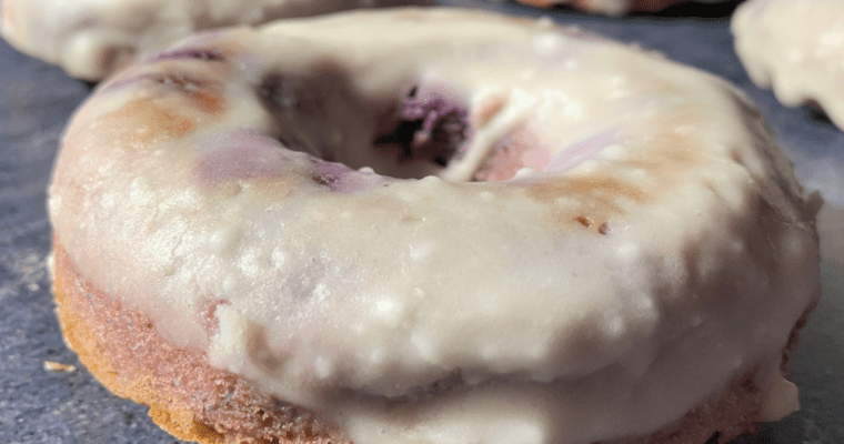 low carb blueberry cake donuts with a sugar free glaze on top
