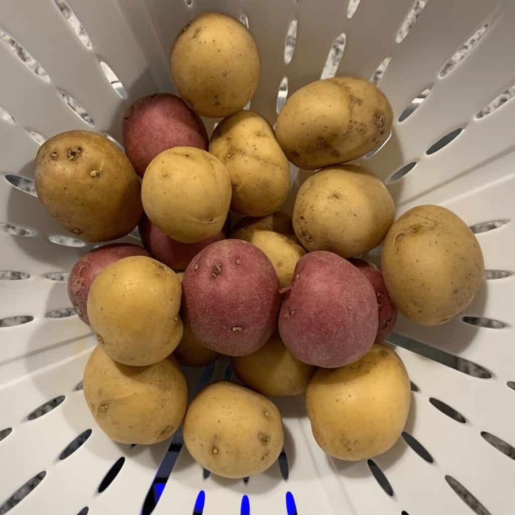 red and gold potatoes for air frying