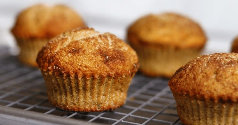 High Protein Snickerdoodle Muffins